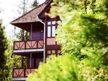 Accommodation Vilyvitány, Ezüstfenyő Hotel