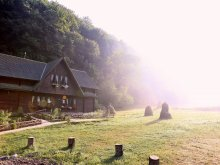 Accommodation Mugești, Dacica Guesthouse