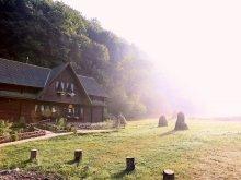 Pensiune Rusca Montană, Pensiunea Dacica