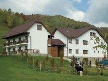 Accommodation Teodorești, Hanul cu Noroc Guesthouse