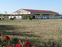 Bed & breakfast Secuiu, Lipicai Guesthouse