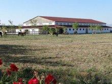 Pensiune Cașoca, Pensiunea Lipicai