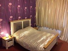 Bed & breakfast Bodrog, Viena Guesthouse