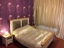 Bed & breakfast Sâmboleni, Viena Guesthouse