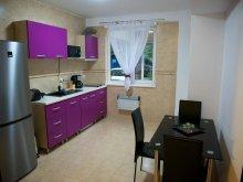 Apartament Țibrinu, Garsoniera Allegro