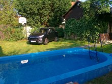 Apartament Balatonfűzfő, Apartment Pilot cu piscina