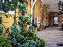 Accommodation Viscri, Tranzit Hotel