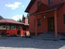 Villa Marosfő (Izvoru Mureșului), Pap Villa