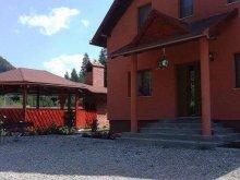 Villa Székelytamásfalva (Tamașfalău), Pap Villa