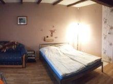 Accommodation Abádszalók, Norbi Apartments