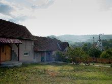 Vendégház Mijlocenii Bârgăului, Tóskert Vendégház