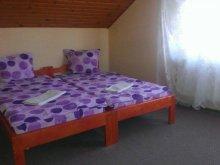 Motel Homoróddaróc (Drăușeni), Pajen Motel