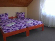 Motel Oroszborgó (Rusu Bârgăului), Pajen Motel