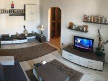 Apartament Țețchea, Apartament Central