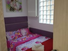 Apartment Broșteni (Vișina), Yasmine Apartment