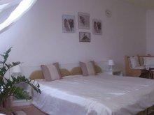 Apartament județul Hajdú-Bihar, Apartamente Zöld Béka Attila