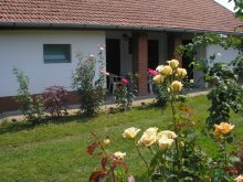Vacation home Tiszaújváros, Százéves vályogház Guesthouse