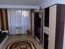 Apartament Iacobeni, Apartament David