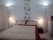 Accommodation Zărieș, Camelia Apartment