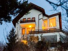 Villa Szentábrahám (Avrămești), Paradise View Villa