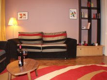 Apartament Rucăr, Boemia Apartment