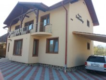 Guesthouse Sovata, Infinity House