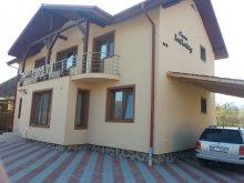 Vendégház Maros (Mureş) megye, Infinity Ház