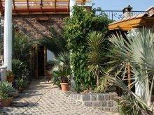 Szállás Balatonfűzfő, Egzotikus Kert Levendula Apartmanház