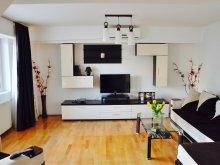 Apartment Ghirdoveni, Unirii Stylish Apartment