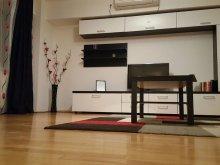 Accommodation Burduca, Unirii Prime Apartment