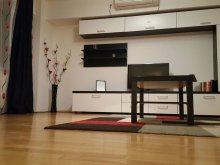 Accommodation Gruiu, Unirii Prime Apartment