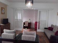 Accommodation Teaca, Transilvania Apartment