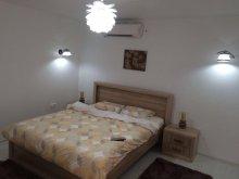 Accommodation Florești (Huruiești), Bogdan Apartment