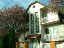 Apartament Tiszaújváros, Apartament Citrus 1