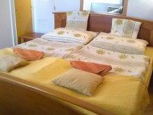 Accommodation Horvátzsidány, Corso Apartment