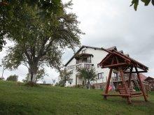 Pensiune Berivoi, Pensiunea Casa Tăbăcaru