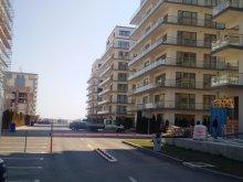 Apartament Negrești, Garsoniera De Silva