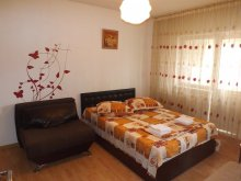 Apartament Pârvu Roșu, Garsoniera Trend