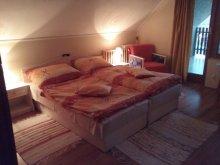 Accommodation Vilyvitány, Saci Guesthouse