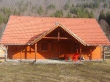 Accommodation Barajul Zetea, Tichet de vacanță, Küküllő Guesthouse