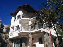 Villa Csíkdánfalva (Dănești), Calea Poienii Villa