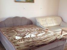 Accommodation Tiszakeszi, Gabi Apartment III.