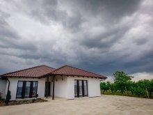 Accommodation Reghea, Primăverii Guesthouse