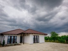 Bed & breakfast Balc, Primăverii Guesthouse