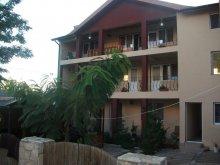 Accommodation Băltenii de Sus, Sellina Guesthouse