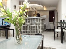 Apartament Frumușani, Apartament Academiei