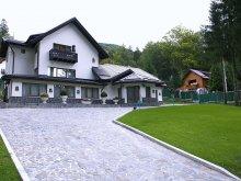 Vilă Pârvu Roșu, Vila Princess Of Transylvania
