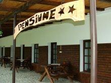 Accommodation Tigveni, Elza Guesthouse