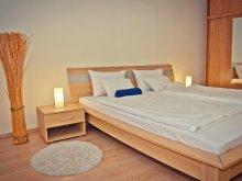 Cazare Szeged, Apartament Central