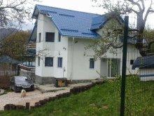 Panzió Brassó (Braşov) megye, Duk Ház